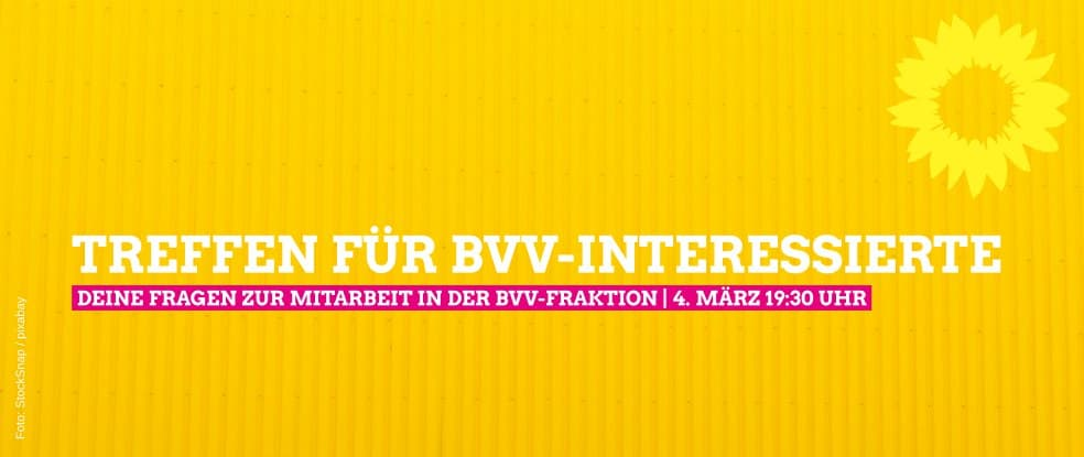 Treffen für BVV-Interessierte: Deine Fragen zur Mitarbeit in der BVV-Fraktion